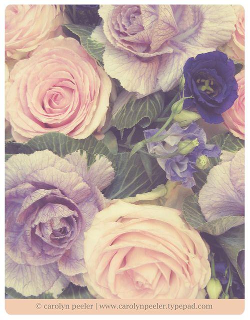 Flowers for blog