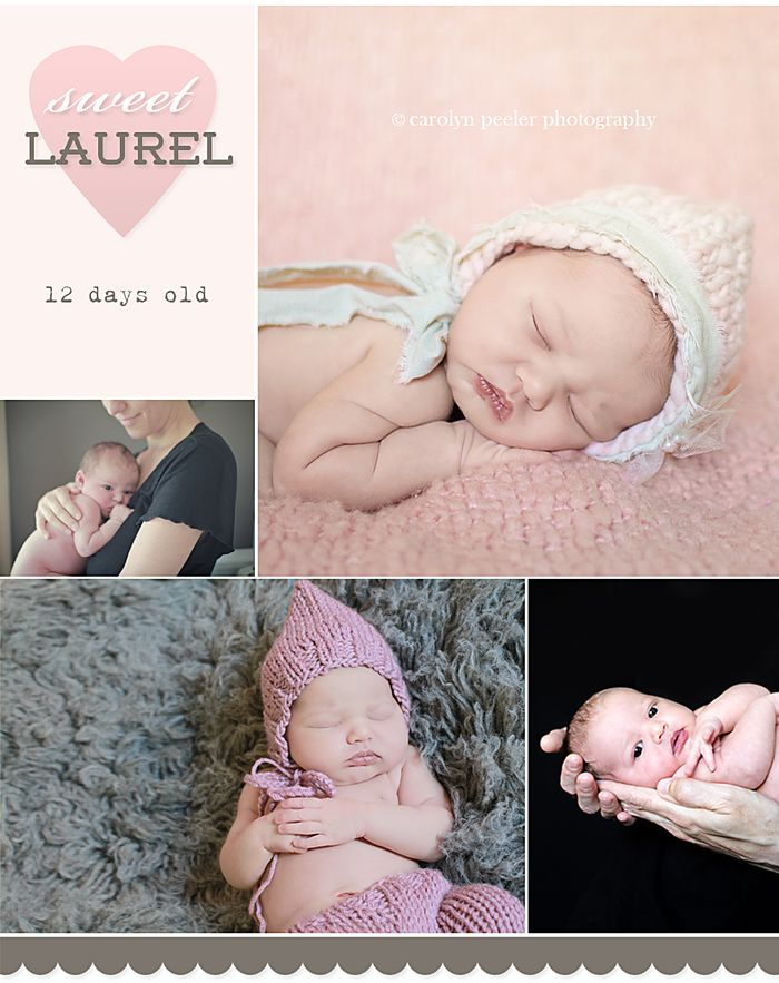 Laurel photography by Carolyn Peeler