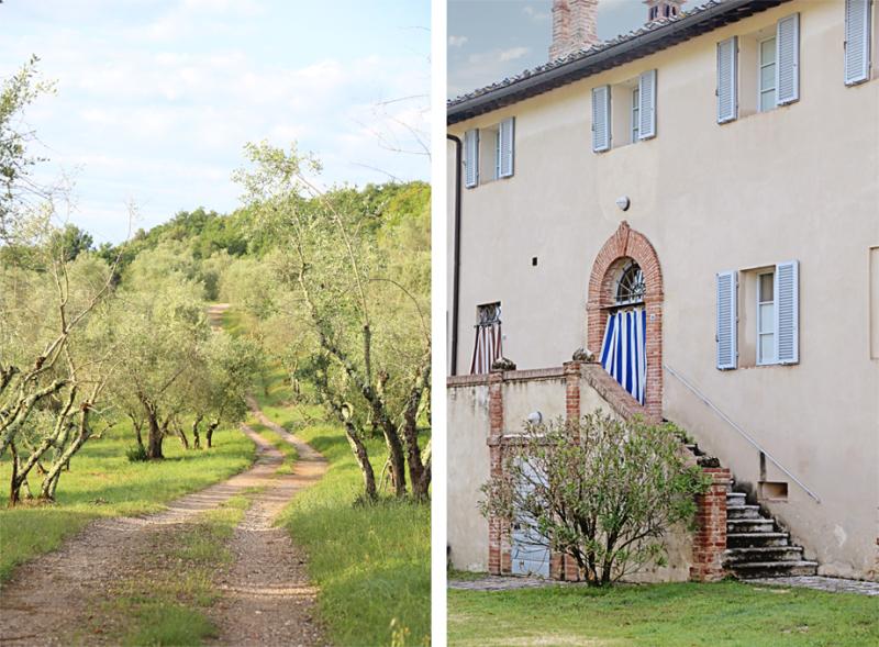 BP olives entrance