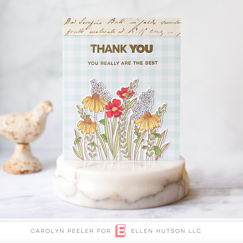 Thank you ebe Oct 19 Carolyn Peeler watermark